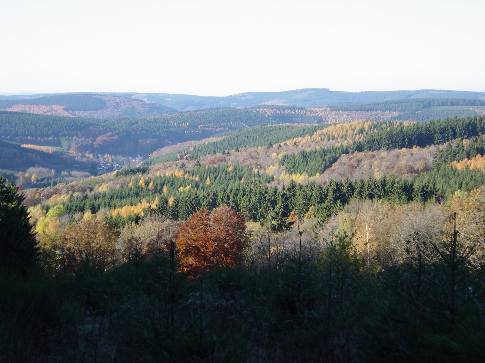Im Herbst 2-2003